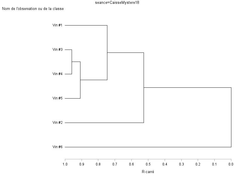 Sortie graphique de Proc Tree